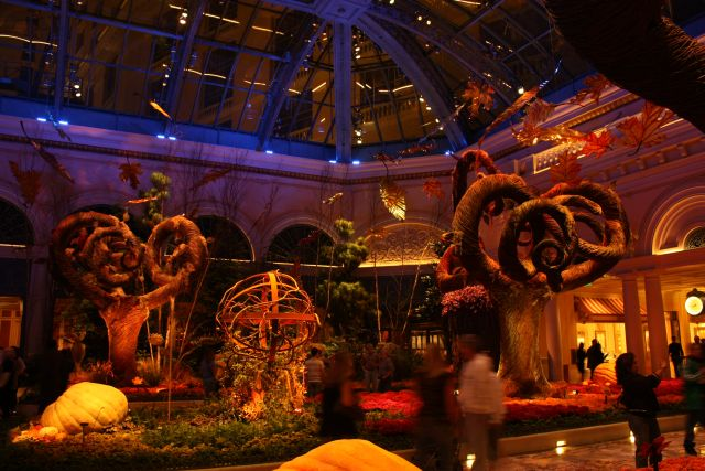 Tag 22 - Las Vegas, 25.10.2010